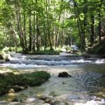 Cascades du hérisson au fil de l'eau