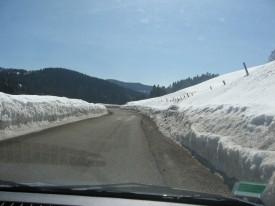 Neige en bordure de Chemin près des Rousses