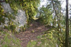 Un sentier de randonnée dans le Jura